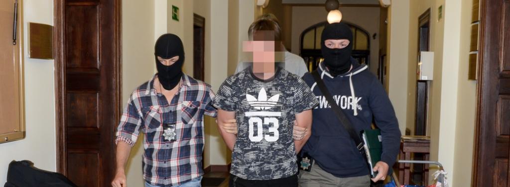 Areszt dla podejrzanego o wyłudzenie 0,5 mln zł w zbiórce na leczenie dziecka.